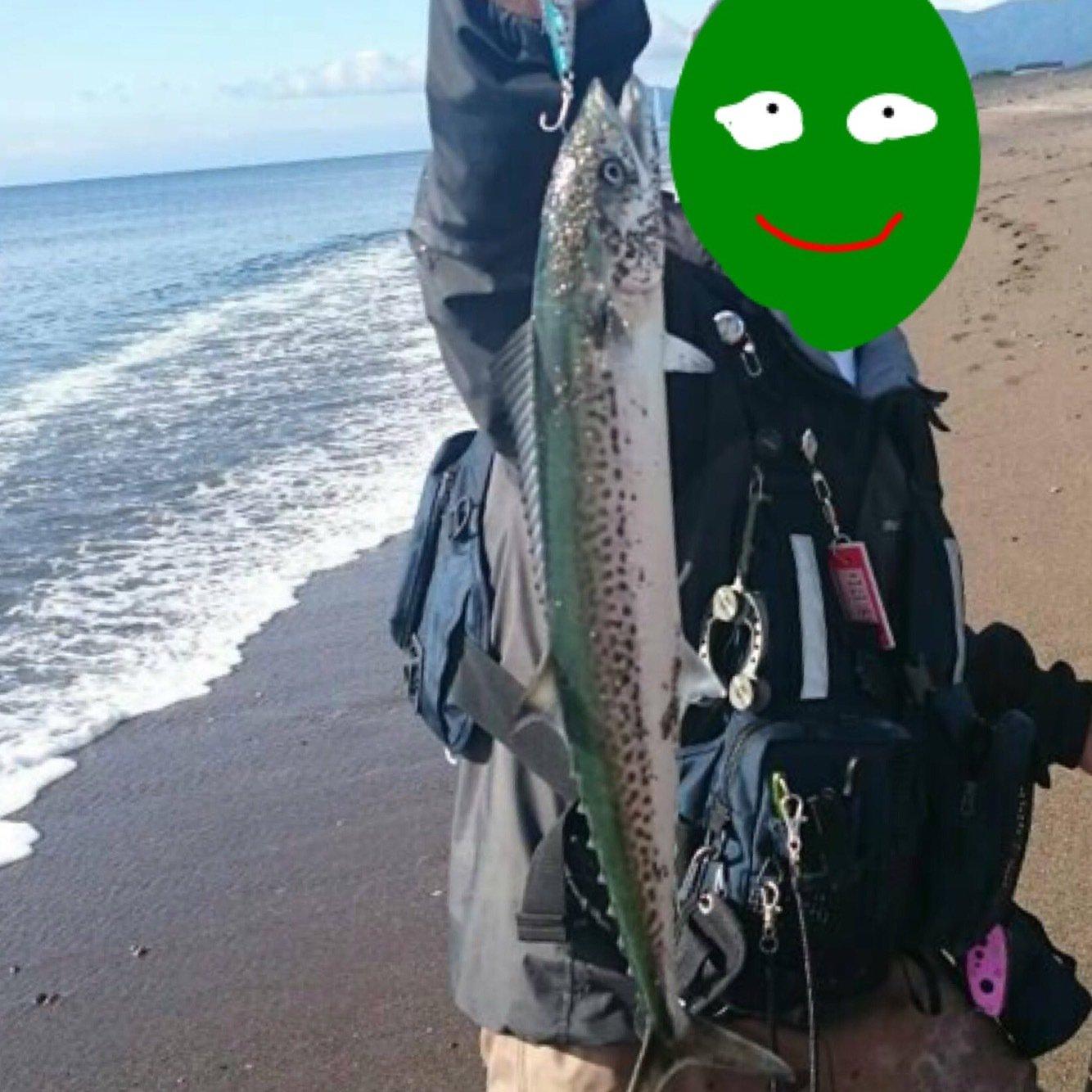 0138STYLEさんの投稿画像,写っている魚はサワラ