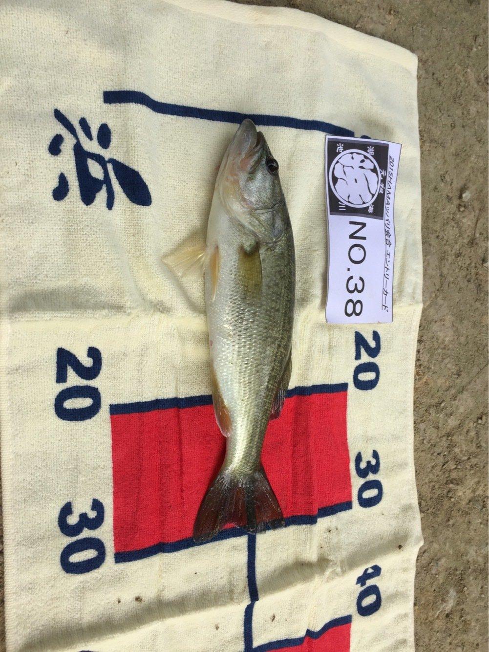かずきさんの投稿画像,写っている魚はブラックバス