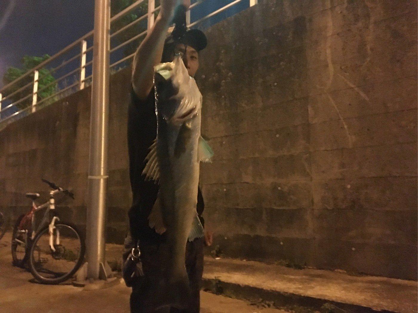 team esoさんの投稿画像,写っている魚はスズキ
