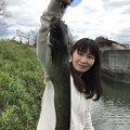 CCBさんの岡山県倉敷市でのナマズの釣果写真