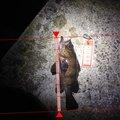 ノリさんさんの三重県四日市市でのメバルの釣果写真