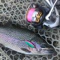 佐野さんの長野県南佐久郡での釣果写真