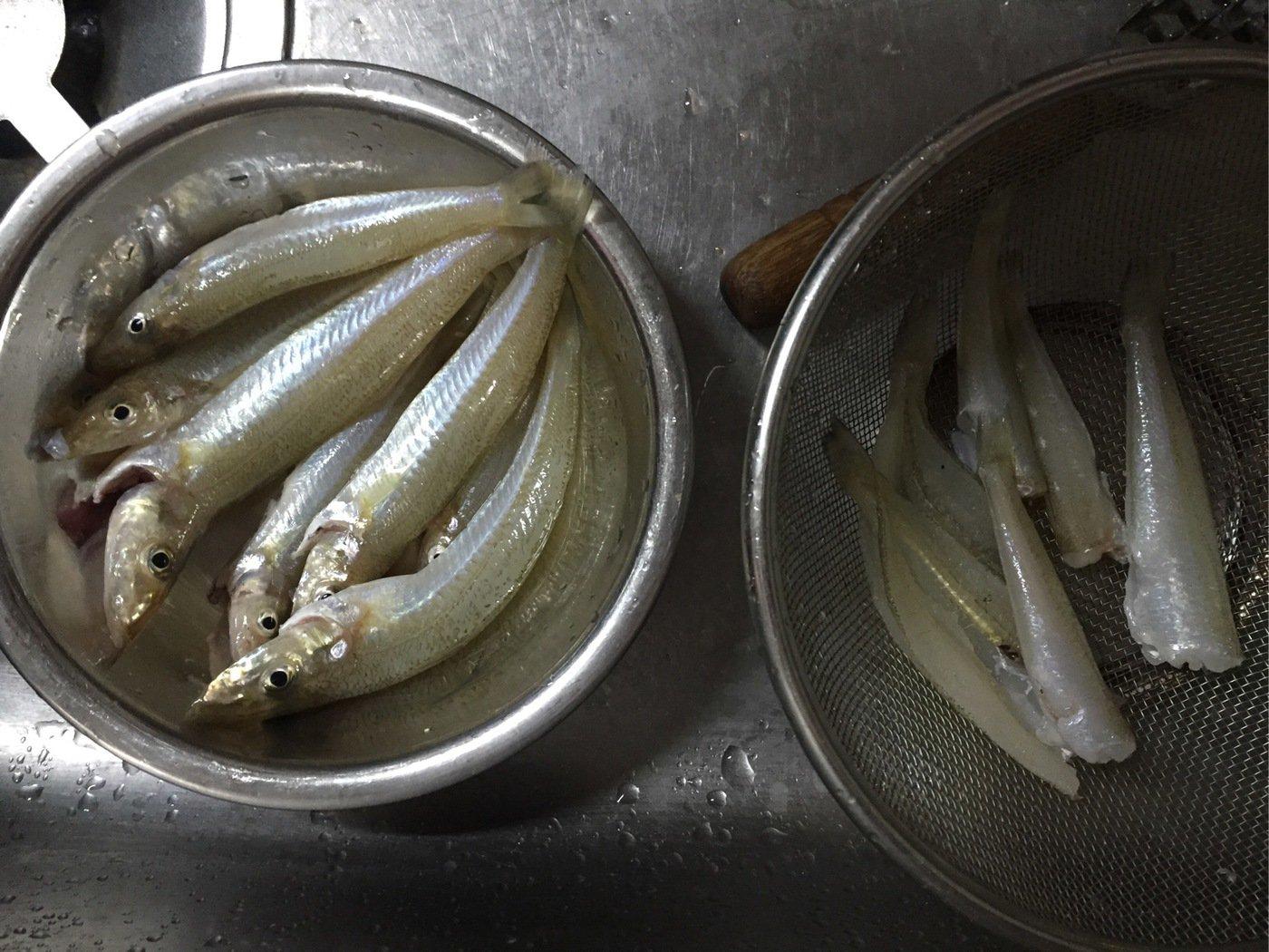 しょんぶさんの投稿画像,写っている魚はシロギス