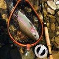 川ちゃんさんの栃木県矢板市での釣果写真