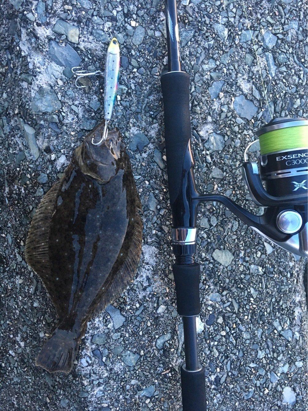 大五郎さんの投稿画像,写っている魚はヒラメ