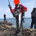 しゅーへーさんの青森県平川市での釣果写真