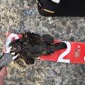 あっき@ひえおひろさんの北海道茅部郡での釣果写真