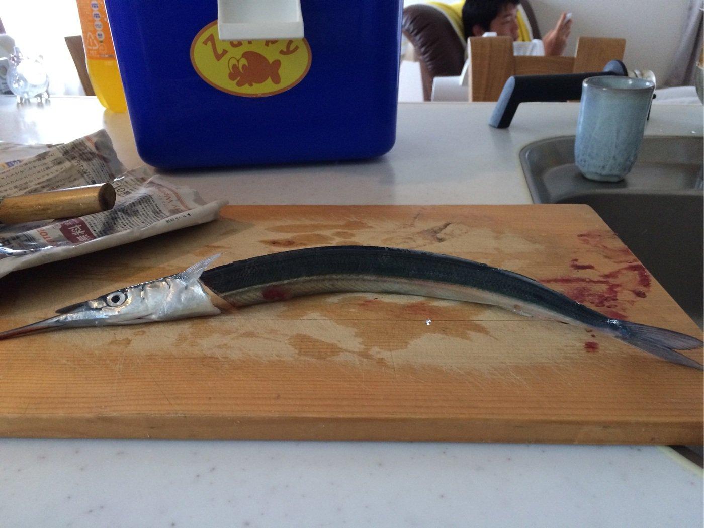 むろさんの投稿画像,写っている魚は