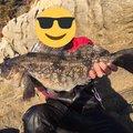 卍さんの岩手県気仙郡での釣果写真