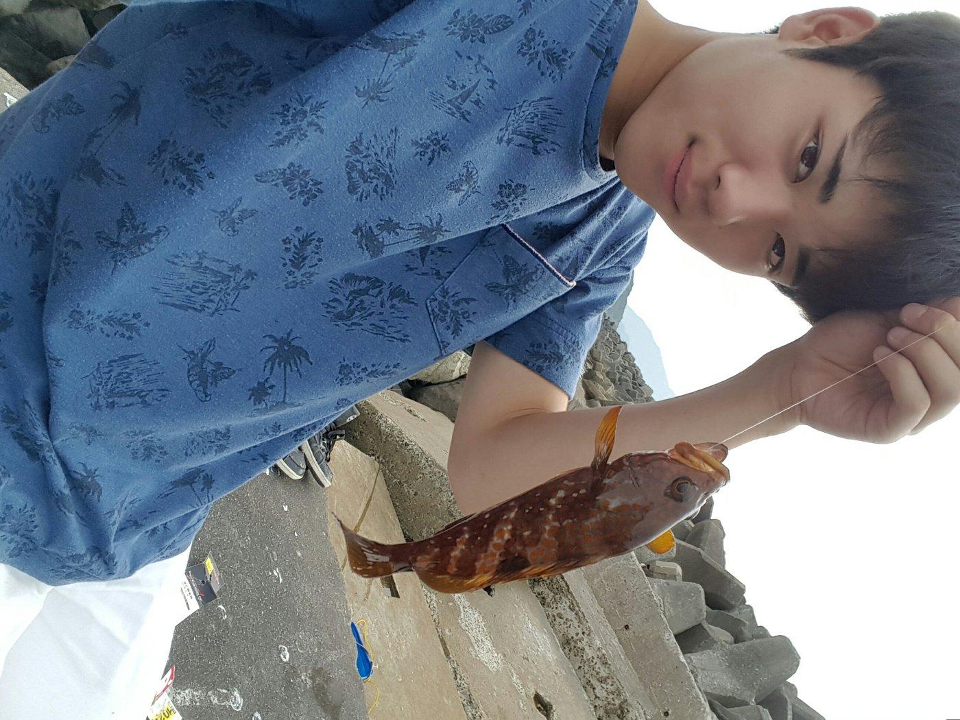 ミクロン( *¯ ꒳¯*)miさんの投稿画像,写っている魚はキジハタ