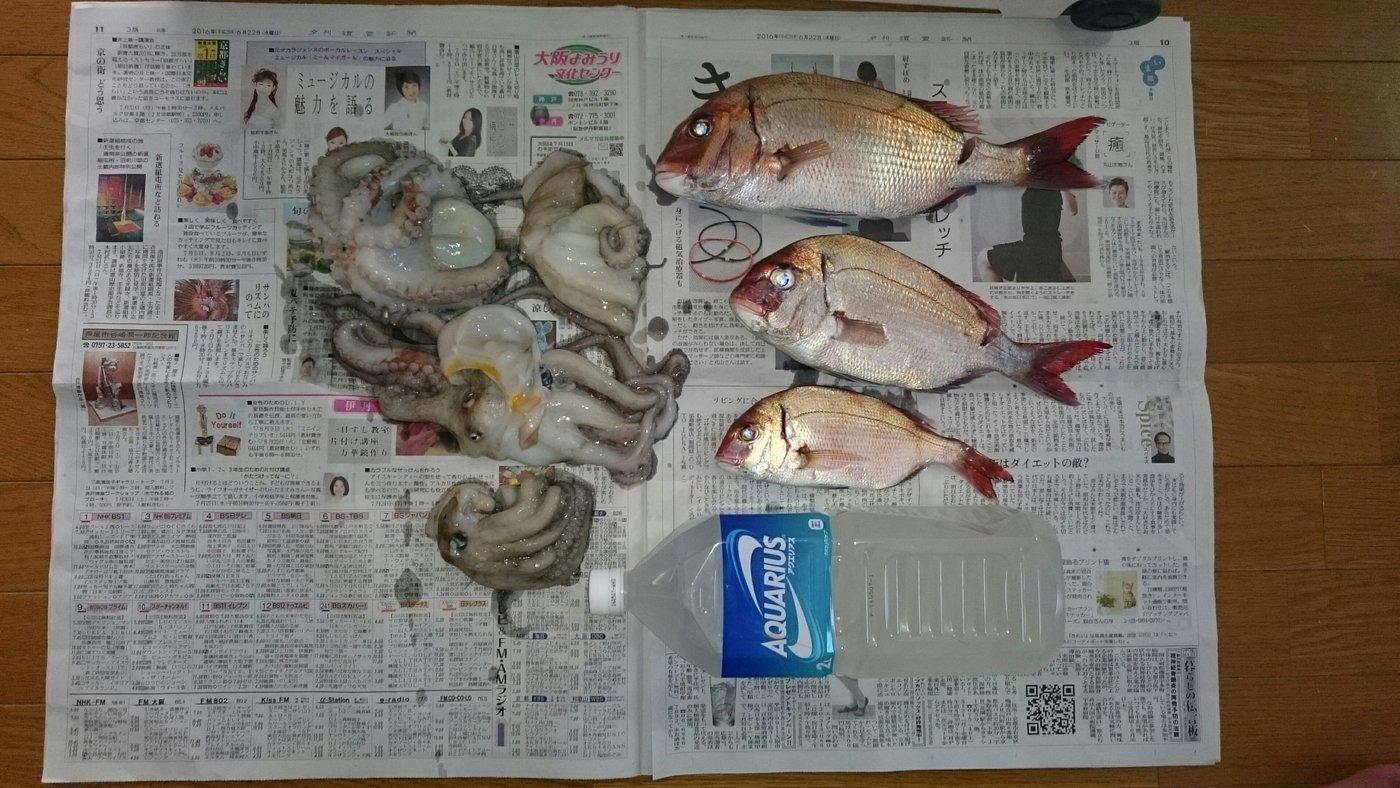 あんこさんの投稿画像,写っている魚は