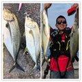 ヨウスケさんの鹿児島県熊毛郡での釣果写真