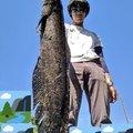 おろてぃさんの佐賀県佐賀市での釣果写真