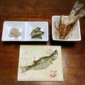 スイミー☆彡さんの千葉県長生郡での釣果写真