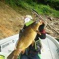 ゆ。さんの新潟県南魚沼市での釣果写真