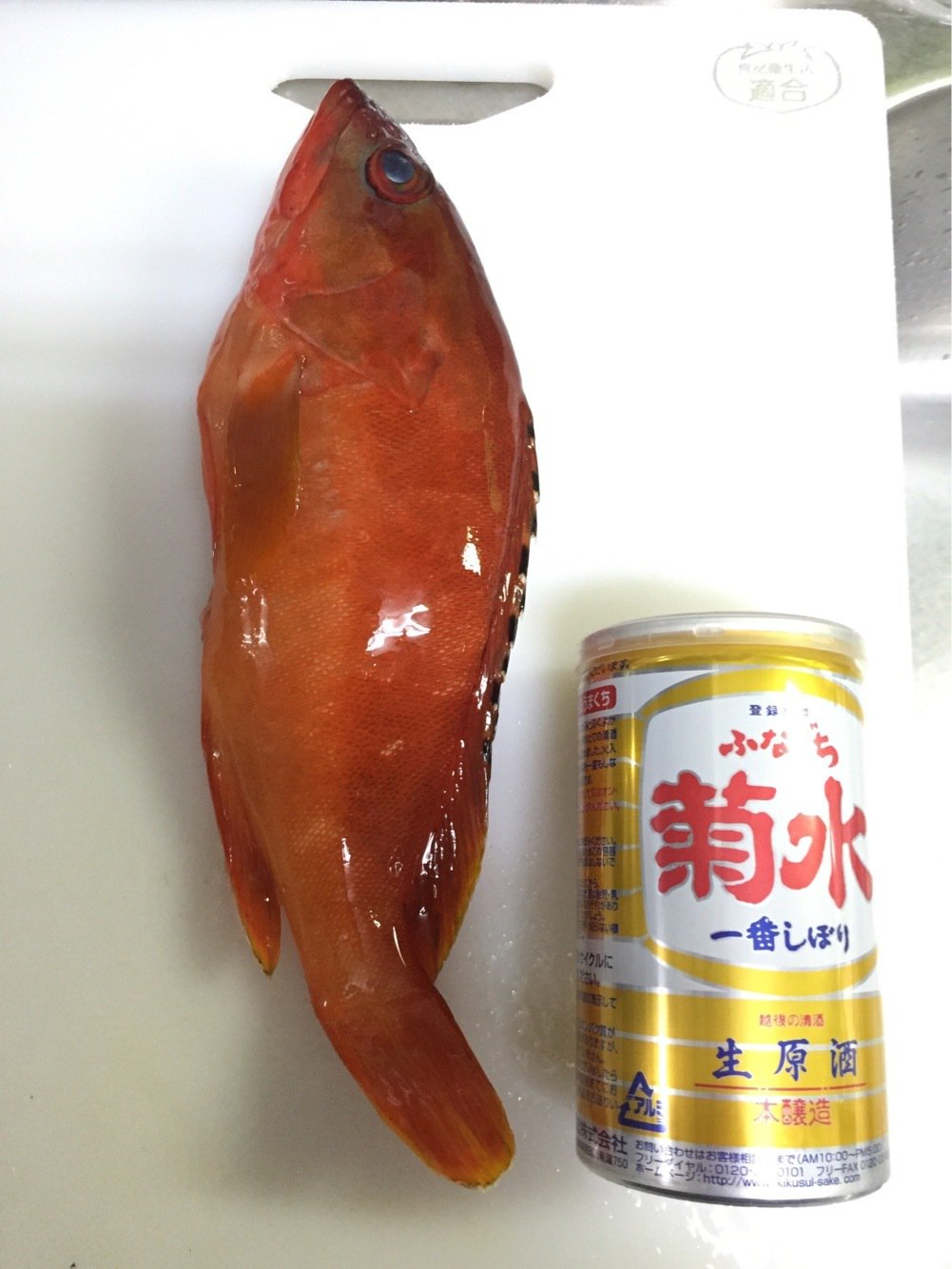 まえださんの投稿画像,写っている魚はアカハタ