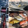 ミヤモトミチヒコさんの佐賀県伊万里市での釣果写真