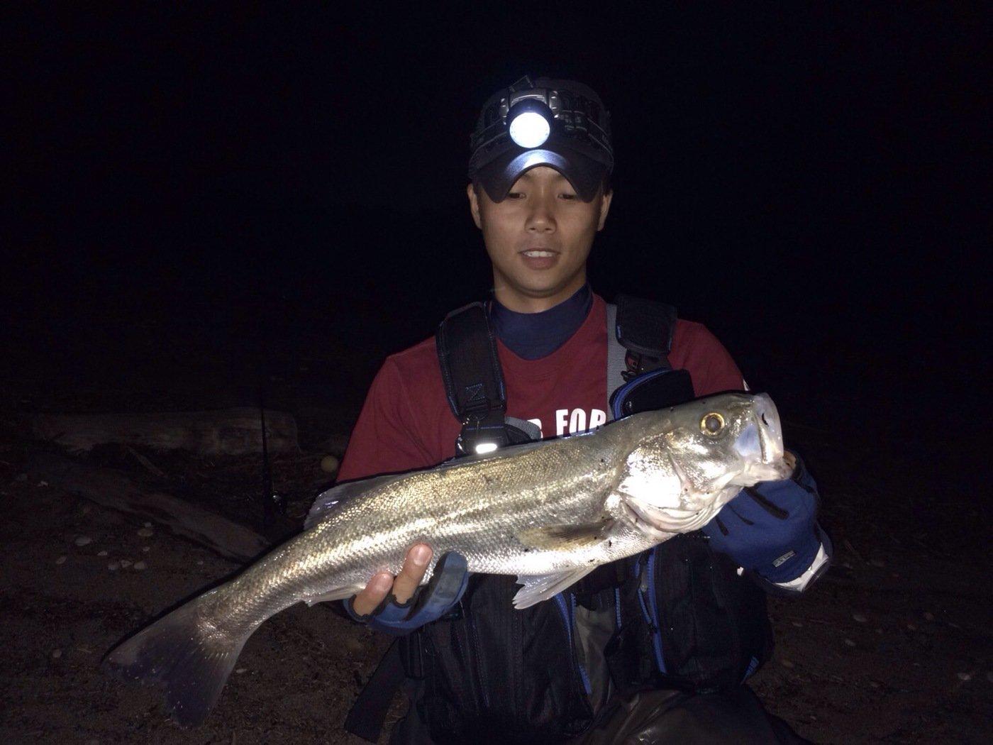 太田 浩貴さんの投稿画像,写っている魚はスズキ