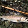 TAKAさんの山梨県上野原市での釣果写真
