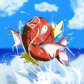 おじゅさんの投稿画像,写っている魚はコイ