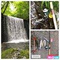 トラさんの宮城県加美郡での釣果写真