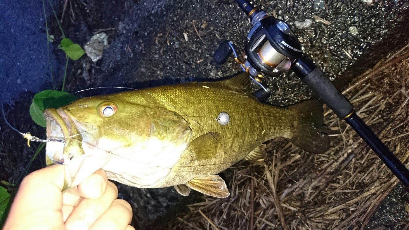 Hiroさんの投稿画像,写っている魚はスモールマウスバス