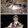 Akiさんの北海道苫小牧市でのアイナメの釣果写真
