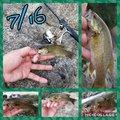 ニコさんの福島県伊達郡でのスモールマウスバスの釣果写真