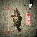 luckyさんの愛知県海部郡でのタケノコメバルの釣果写真