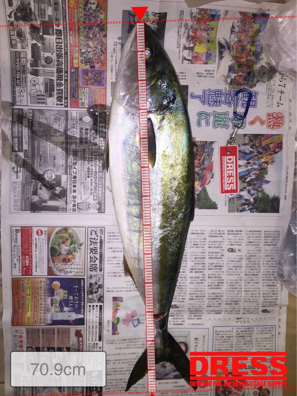 たっかぽんさんの投稿画像,写っている魚はワラサ