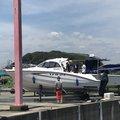 しょうたろうさんの静岡県湖西市でのマサバの釣果写真