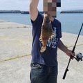 かずさんの北海道帯広市での釣果写真