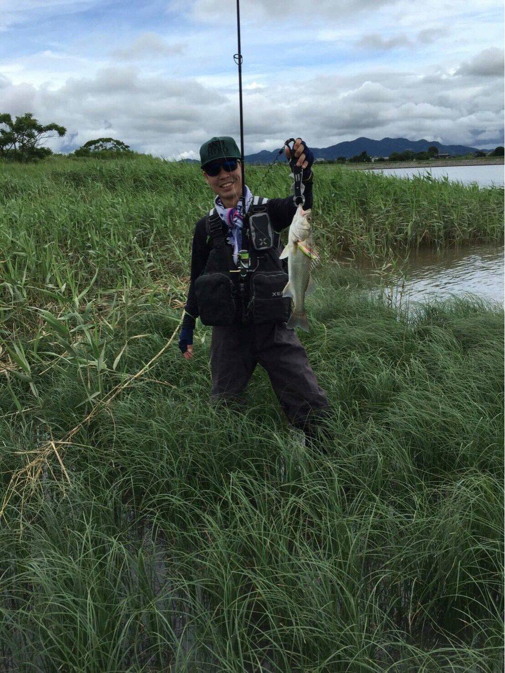 IFC代表さんの投稿画像,写っている魚はスズキ