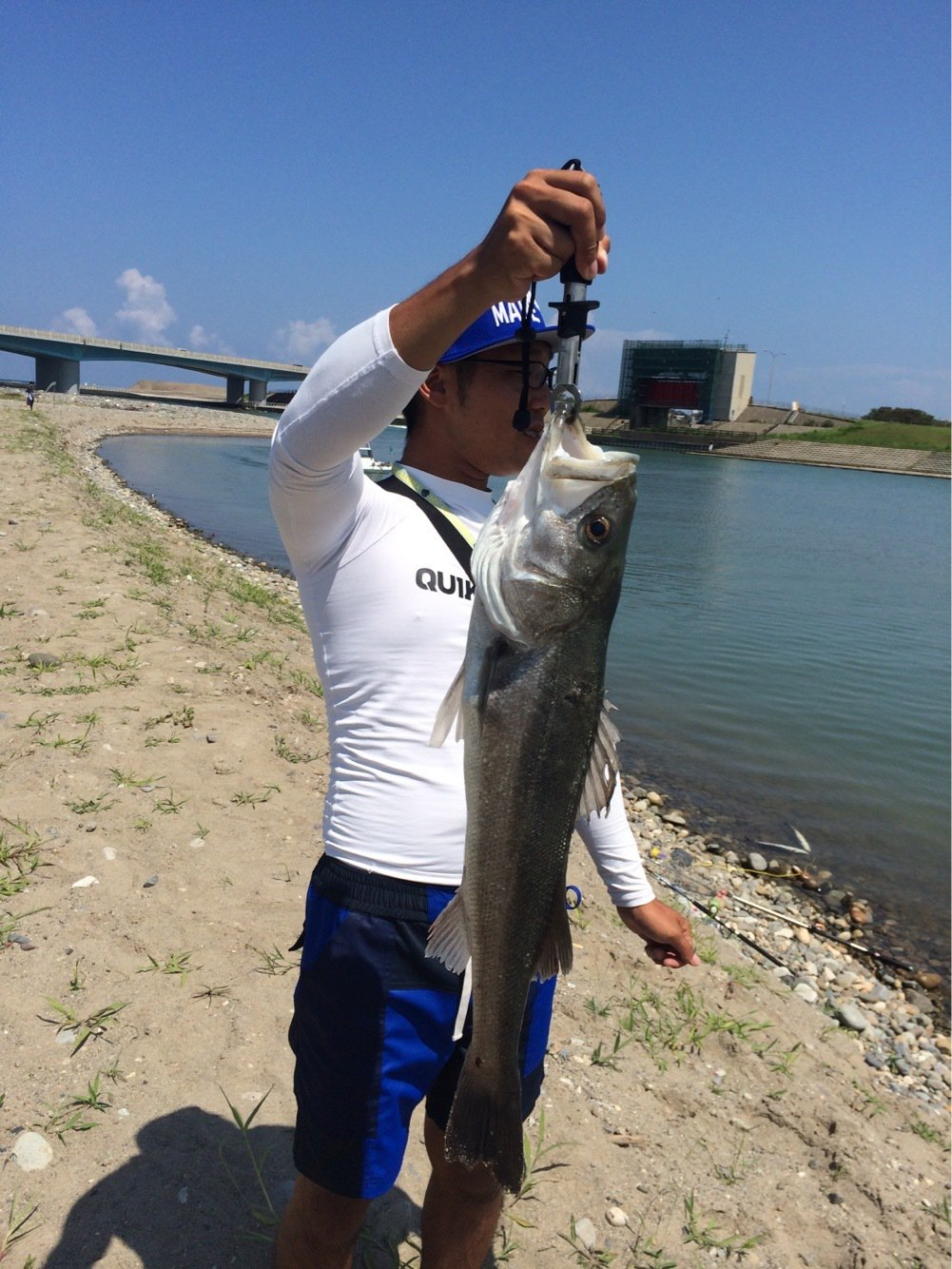 細野 隼佑さんの投稿画像,写っている魚はスズキ
