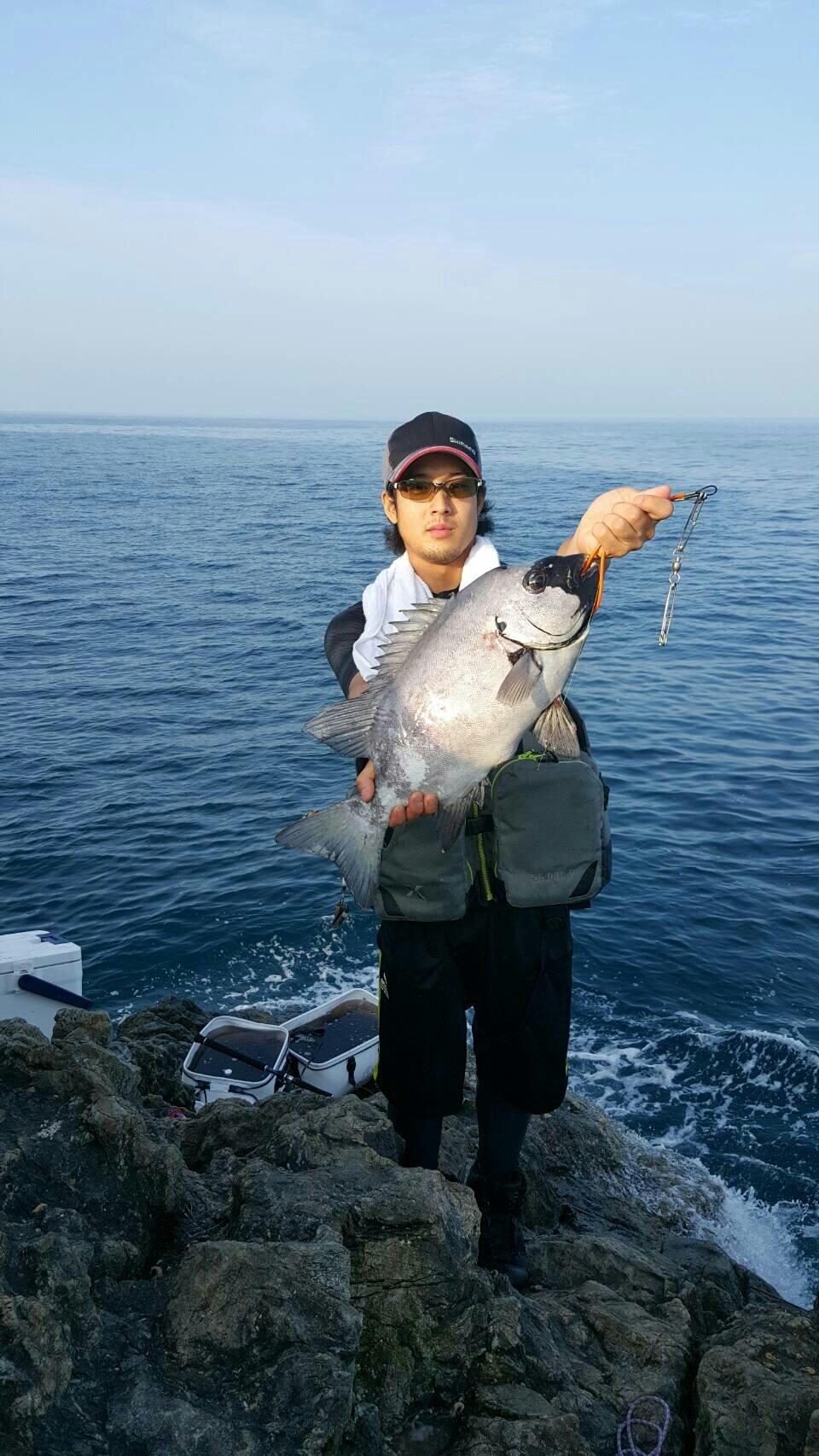 あっくんさんの投稿画像,写っている魚はイシダイ