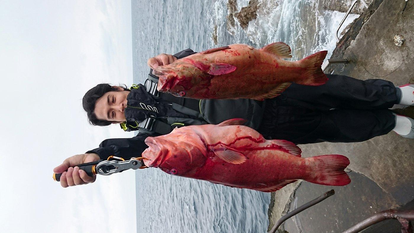 あっくんさんの投稿画像,写っている魚はスジアラ