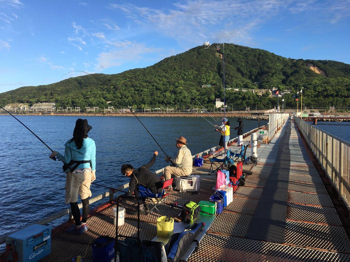 Su-DOさんの投稿画像,写っている魚はアジ,マダイ,カサゴ,マイワシ,キュウセン
