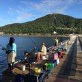 Su-DOさんの兵庫県明石市でのマダイの釣果写真