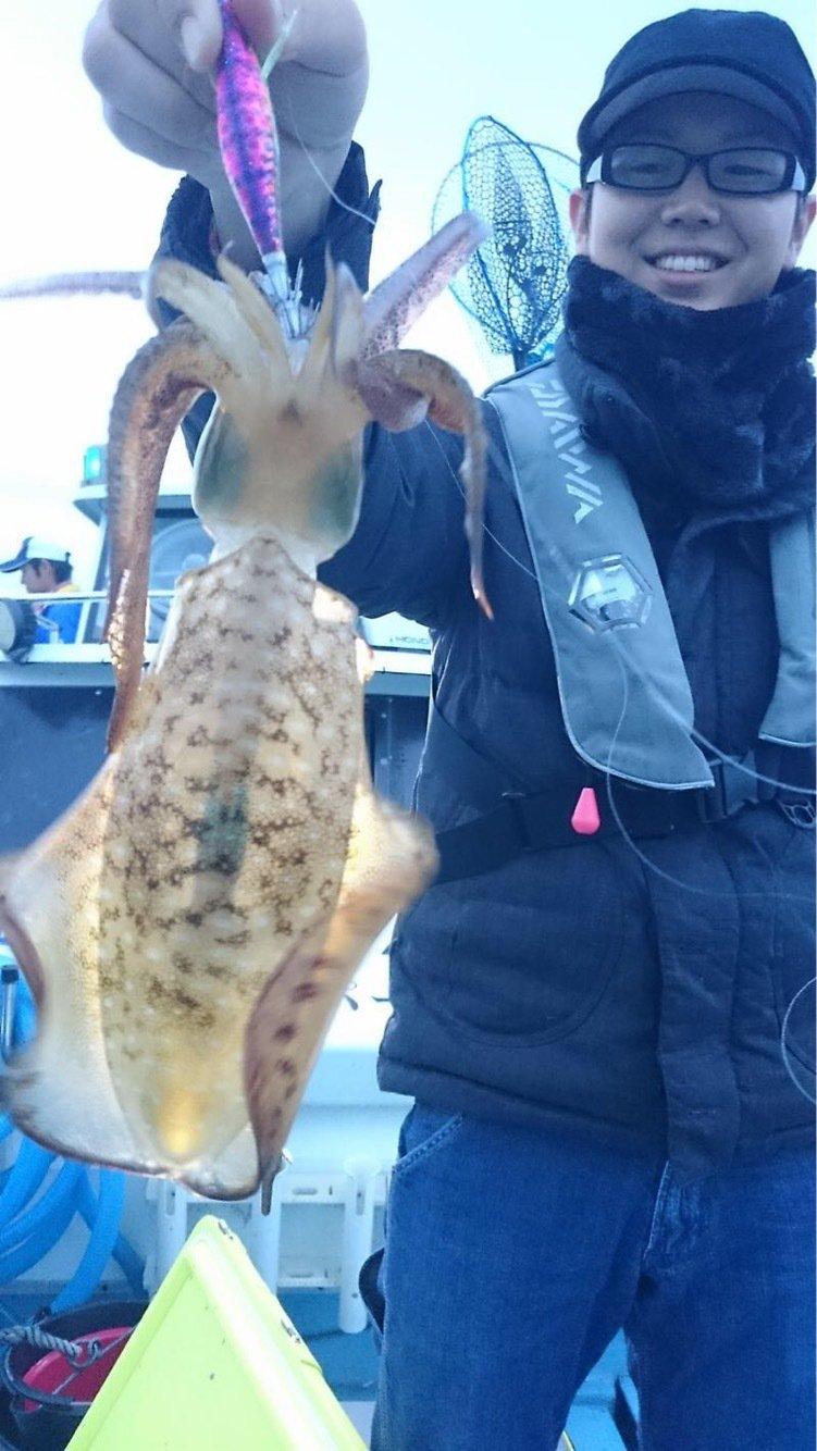 せいしょうさんの投稿画像,写っている魚はアオリイカ