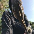 そーすけさんの佐賀県伊万里市での釣果写真
