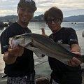 kowwwさんの京都府舞鶴市でのスズキの釣果写真