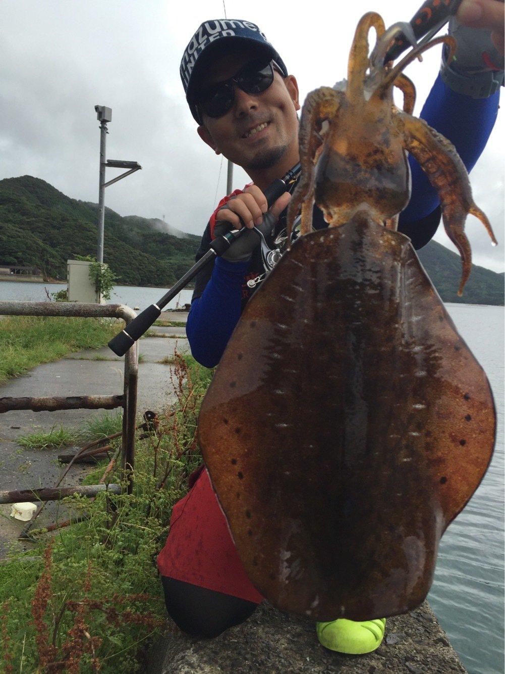 ぐっさんさんの投稿画像,写っている魚はアオリイカ