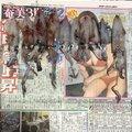 風来のモンドさんの兵庫県でのケンサキイカの釣果写真