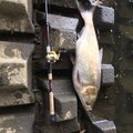 mameo33 さんの埼玉県八潮市での釣果写真
