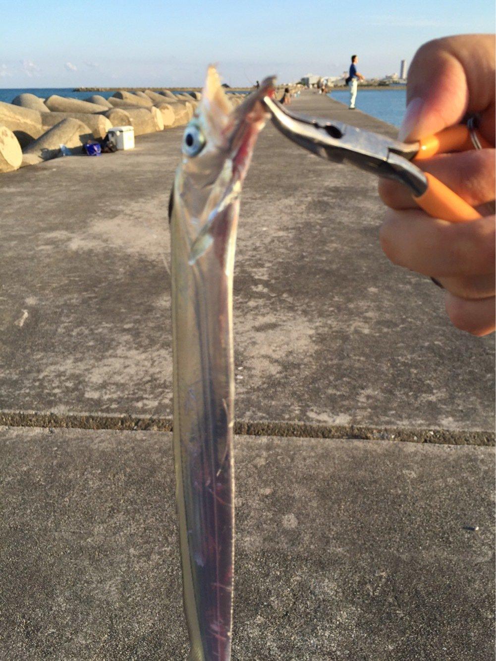 Mokyu さんの投稿画像,写っている魚はタチウオ