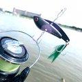 アブさんの新潟県長岡市での釣果写真