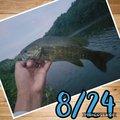 ニコさんの福島県二本松市での釣果写真