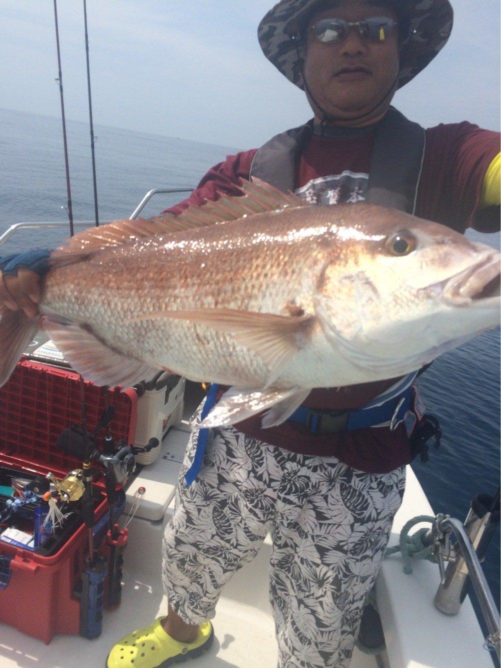 seamantakaさんの投稿画像,写っている魚はマダイ