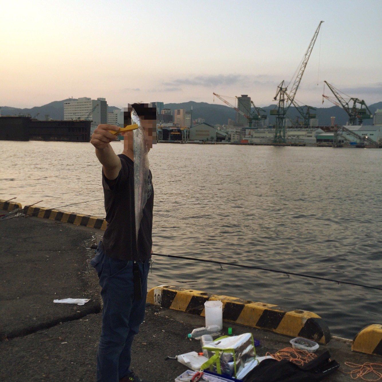 スノエルさんの投稿画像,写っている魚はタチウオ