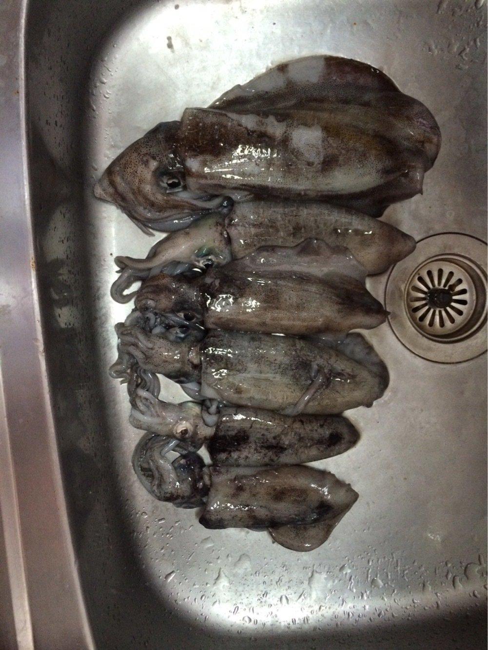 江崎キチさんの投稿画像,写っている魚はアオリイカ